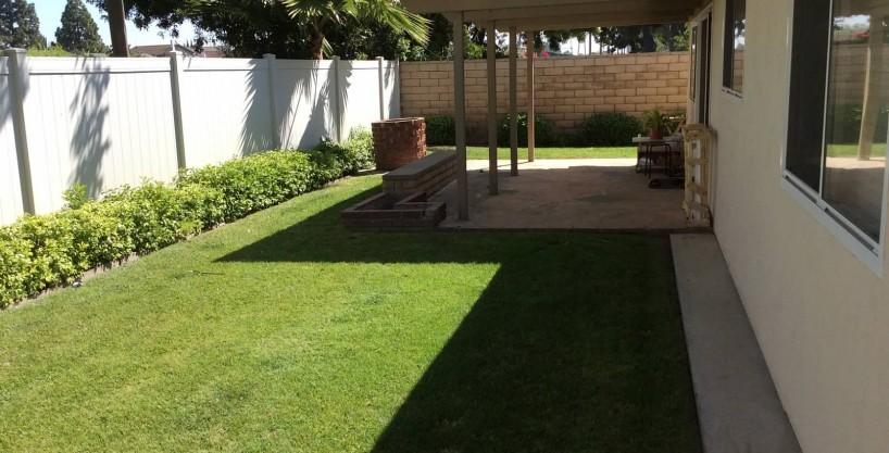 11433 Yearling Backyard