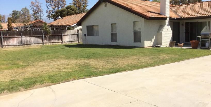2638 Euclid Backyard
